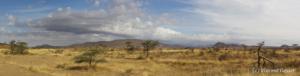 Panorama Samburu 001