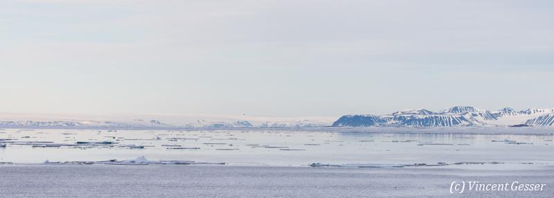 Icefloe in Spitzbergen