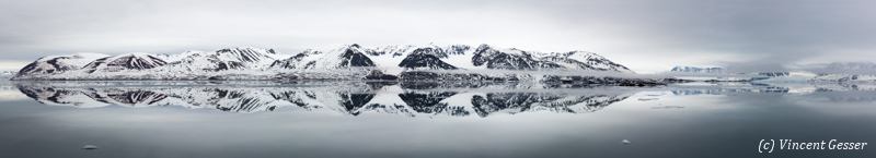 Arctic reflections 1
