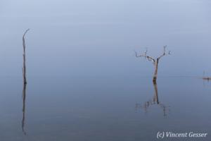Blue water landscape on Lake Kariba, Zimbabwe