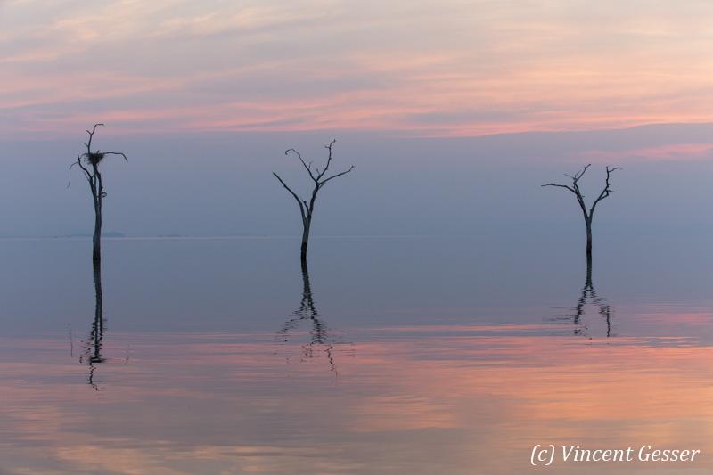 Blue and pink water landscape on Lake Kariba, Zimbabwe