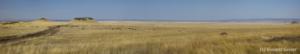 panorama-masai-mara-005