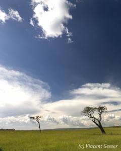 paysage-002-_mg_1444