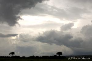 paysage-004-_mg_1847