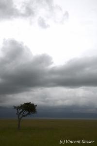 paysage-005-_mg_1851