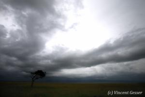 paysage-006-_mg_1853