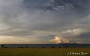 paysage-007-_r5g1763