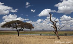 paysage-017-_mg_2844