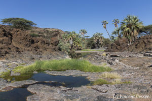 Oasis setting of Mountain of the Moon movie near Lake Turkana, Kenya, 2