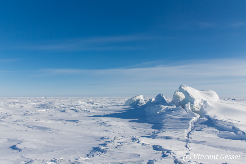 Hudson Bay frozen, Churchill, Manitoba, 1