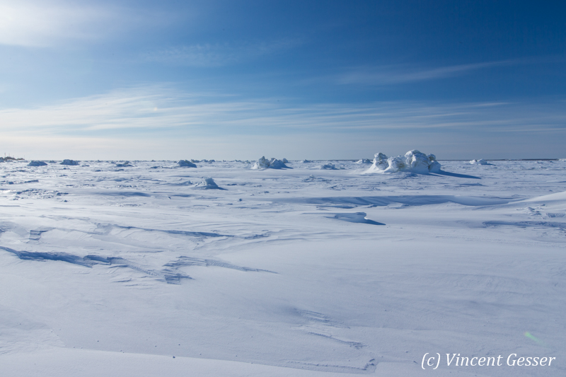 Hudson Bay frozen, Churchill, Manitoba, 3