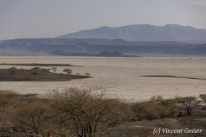 Lake Magadi, Shompole Sanctuary, Kenya