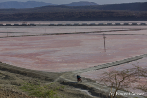 Soda Plant in activity, Lake Magadi, Shompole Sanctuary, Kenya, 1