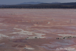 Soda Plant in activity, Lake Magadi, Shompole Sanctuary, Kenya, 2