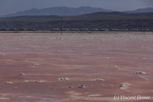 Soda Plant in activity, Lake Magadi, Shompole Sanctuary, Kenya, 3