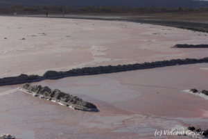 Soda Plant in activity, Lake Magadi, Shompole Sanctuary, Kenya, 4