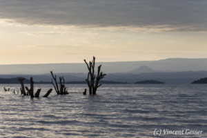 Landscape of Lake Baringo early morning, Masai Mara National Reserve, Kenya