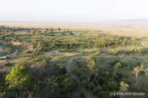 Aerial view and photography Masai Mara National Reserve at dawn, TransMara, Kenya, 16