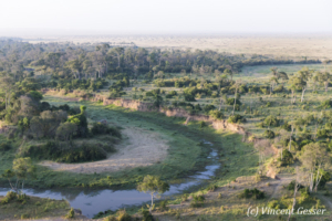 Aerial view and photography Masai Mara National Reserve at dawn, TransMara, Kenya, 17