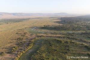 Aerial view and photography Masai Mara National Reserve at dawn, TransMara, Kenya, 18