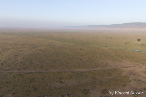 Aerial view and photography Masai Mara National Reserve at dawn, TransMara, Kenya, 19