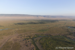 Aerial view and photography Masai Mara National Reserve at dawn, TransMara, Kenya, 20