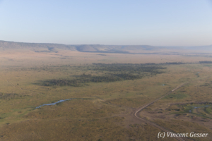 Aerial view and photography Masai Mara National Reserve at dawn, TransMara, Kenya, 22