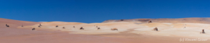 Panorama Desert Salvador Dali 1