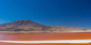 Panorama Laguna Colorada 1