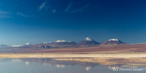Landscape of Mountains and their reflections in Laguna Chaxa, Chile