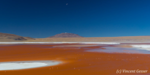 Landscape of Laguna Colorada with flamingos, Bolivia