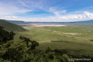 View of the Ngorongoro Crater, Tanzania